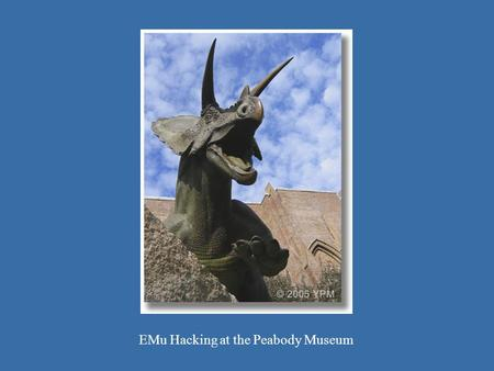 Toro 1 EMu Hacking at the Peabody Museum. Yale campus.