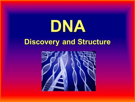 DNA Discovery and Structure. What is DNA? Deoxyribonucleic acid DNA is the molecule of genes. It is found in the chromosomes. It holds the instructions.
