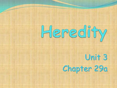 Unit 3 Chapter 29a. Heredity Who we are is guided by the gene- bearing chromosomes we receive from our parents in egg and sperm. Segments of DNA called.