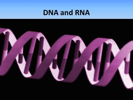 DNA and RNA. DNA To understand genetics, biologist had to learn the chemical makeup of the gene. Scientist discovered that genes are made of DNA. Scientists.