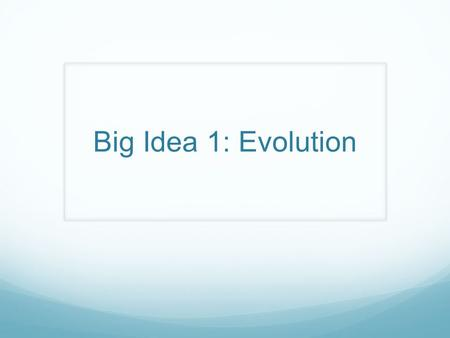 Big Idea 1: Evolution.