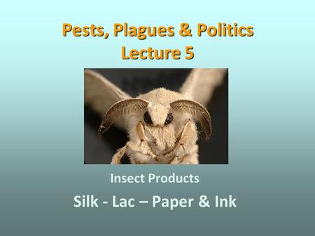 Pests, Plagues & Politics Lecture 5 Insect Products Silk - Lac – Paper & Ink.