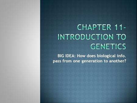 BIG IDEA: How does biological info. pass from one generation to another?