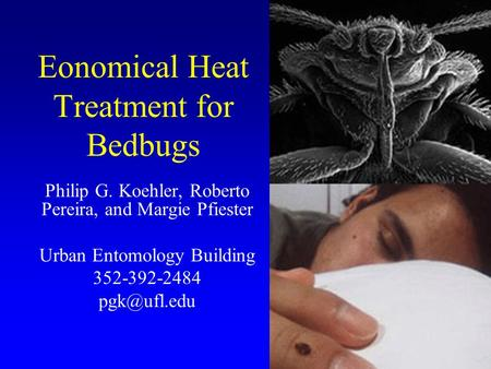 Eonomical Heat Treatment for Bedbugs Philip G. Koehler, Roberto Pereira, and Margie Pfiester Urban Entomology Building 352-392-2484