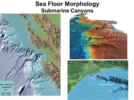 Sea Floor Morphology Submarine Canyons. Mosher, et al., 2004.