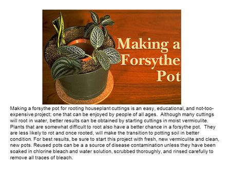Making a forsythe pot for rooting houseplant cuttings is an easy, educational, and not-too- expensive project; one that can be enjoyed by people of all.