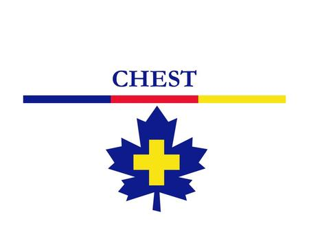 CHEST. 2 Anatomy 3 Overview of Chest Injuries  Can be life-threatening  May result in damage to either the heart or the lung and cause severe internal.