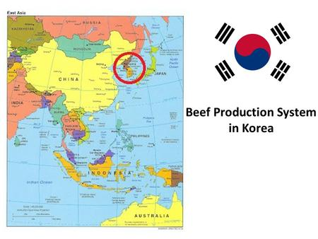 Beef Production System in Korea. Table of Content Overview of Republic of Korea Beef consumption Domestic Beef Production and Imported beef The Hanwoo.