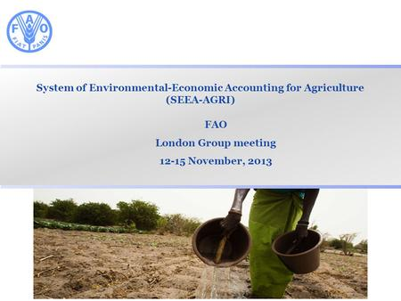 System of Environmental-Economic Accounting for Agriculture (SEEA-AGRI) FAO London Group meeting 12-15 November, 2013.