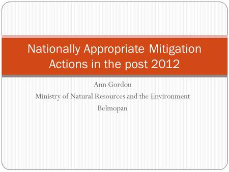 Ann Gordon Ministry of Natural Resources and the Environment Belmopan Nationally Appropriate Mitigation Actions in the post 2012.