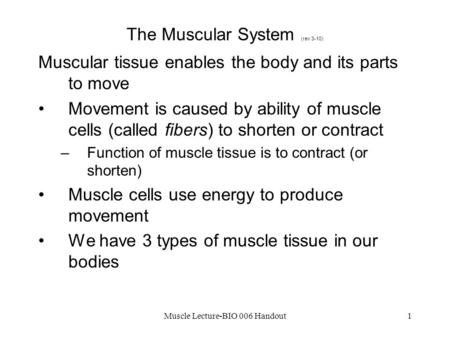 The Muscular System (rev 3-10)