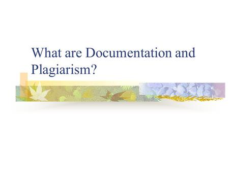What are Documentation and Plagiarism?
