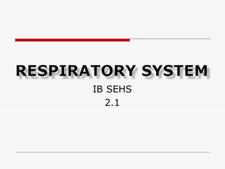 Respiratory system IB SEHS 2.1.