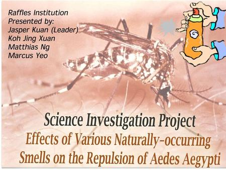  Aedes Aegypti, commonly known as Aedes mosquitoes, are a dangerous species of mosquitoes, which play the role of the carriers of potentially deadly.