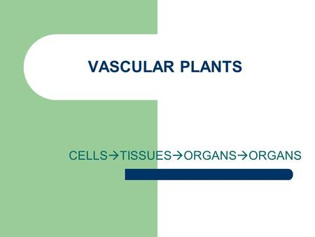 CELLSTISSUESORGANSORGANS