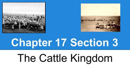 Chapter 17 Section 3 The Cattle Kingdom.