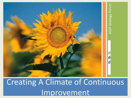 AQIP Strategy Forum Creating A Climate of Continuous Improvement.
