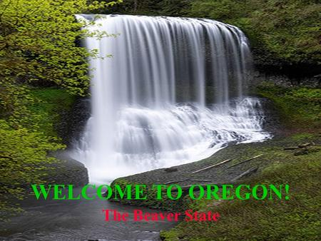 Welcome to Oregon! WELCOME TO OREGON! The Beaver State.