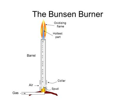 The Bunsen Burner MixtreofGAS and AIRMixtreofGAS and AIR Barrel Air Gas Collar Hottest part Oxidizing flame Spud.