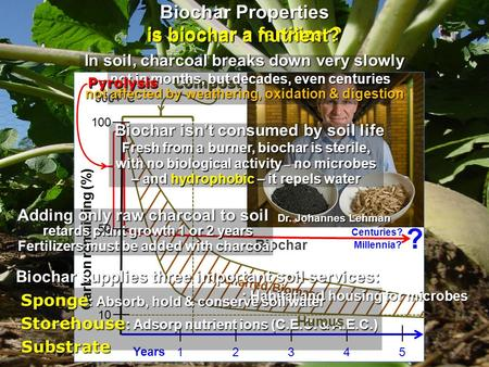Carbon remaining (%) 100 12345 Years Biochar Uncharred Biomass Centuries? Millennia? Compost 500+°C Dr. Johannes Lehman – and hydrophobic – it repels water.