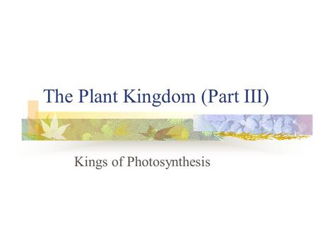 The Plant Kingdom (Part III)