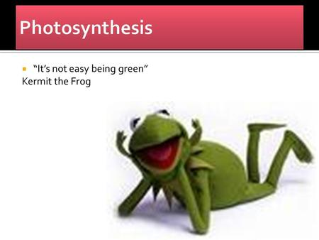 " ""It's not easy being green"" Kermit the Frog.  Carried out by plants, algae, some protists, and cyanobacteria.  All contain the pigment chlorophyll,"