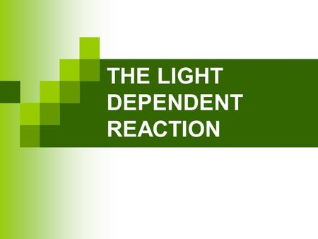 THE LIGHT DEPENDENT REACTION. OXIDATION AND REDUCTION Oxidation Is a Loss of electrons (OIL) Reduction Is a Gain of electrons (RIG) © 2010 Paul Billiet.