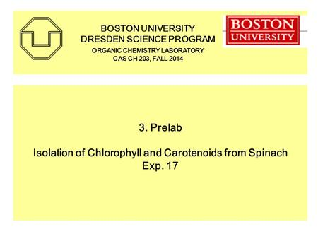 3. Prelab Isolation of Chlorophyll and Carotenoids from Spinach Exp. 17 BOSTON UNIVERSITY DRESDEN SCIENCE PROGRAM ORGANIC CHEMISTRY LABORATORY CAS CH 203,