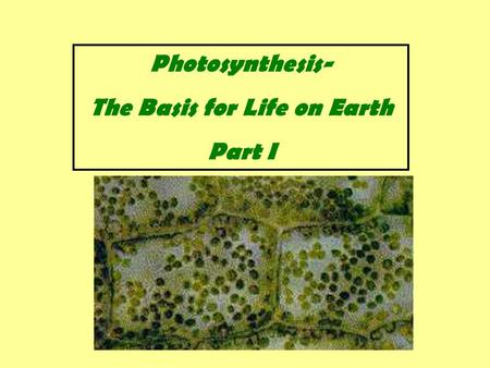 Photosynthesis- The Basis for Life on Earth Part I.