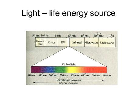 Light – life energy source. Light absorbed, reflected and transmitted.