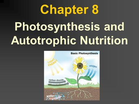 Chapter 8 Photosynthesis and Autotrophic Nutrition.