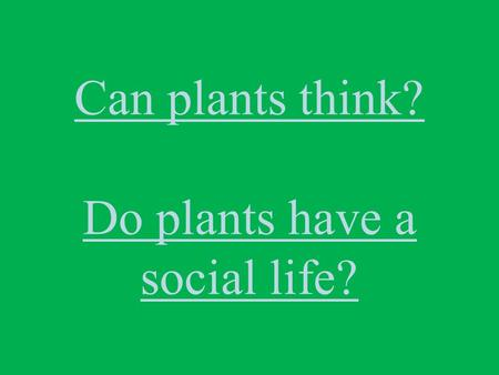 Can plants think? Do plants have a social life?. PHOTOSYNTHESIS: The starting point of life*