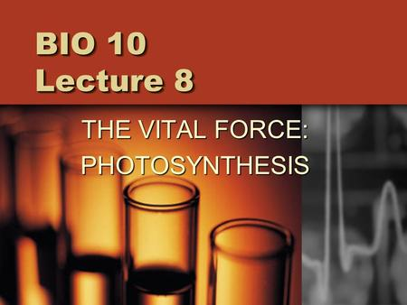 BIO 10 Lecture 8 THE VITAL FORCE: PHOTOSYNTHESIS.