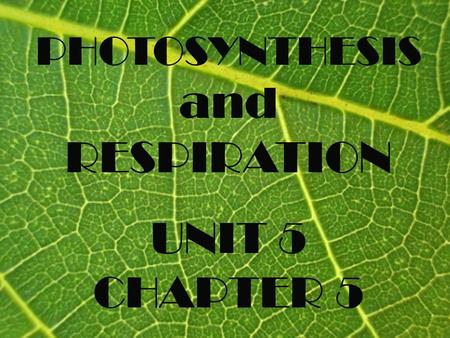 PHOTOSYNTHESIS and RESPIRATION UNIT 5 CHAPTER 5. SECTION 1 Photosynthesis.