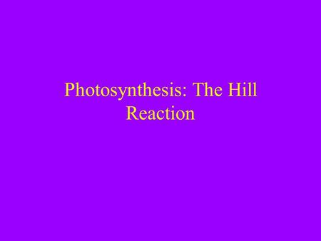 Photosynthesis: The Hill Reaction. Announcements -There is a quiz next week that will cover Fermentation and Photosynthesis. -home work is posted on my.