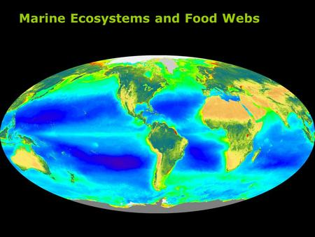 Marine Ecosystems and Food Webs. Carbon Cycle Marine Biota Export Production.