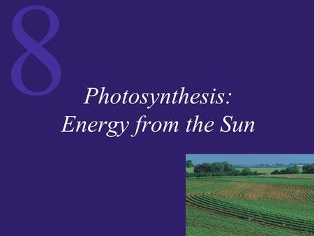 8 Photosynthesis: Energy from the Sun. 8 Identifying Photosynthetic Reactants and Products Photosynthesis, the biochemical process by which plants capture.