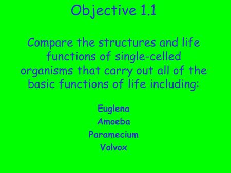 Objective 1.1 Compare the structures and life functions of single-celled organisms that carry out all of the basic functions of life including: Euglena.
