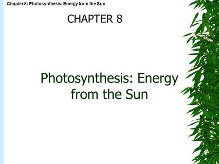 Chapter 8: Photosynthesis: Energy from the Sun Photosynthesis: Energy from the Sun CHAPTER 8.