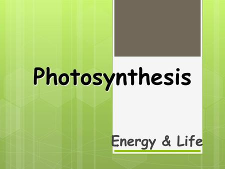 Photosynthesis Energy & Life 1. Overview of Photosynthesis 2.