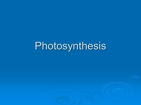 Photosynthesis. Photosynthesis: An Overview  Electrons play a primary role in photosynthesis  In eukaryotes, photosynthesis takes place in chloroplasts.