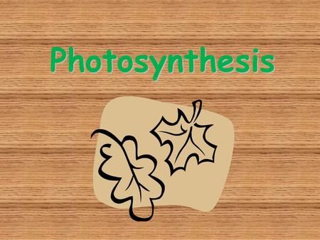 Photosynthesis. Autotrophs Plants and some other types of organisms that contain chlorophyll are able to use light energy from the sun to produce food.