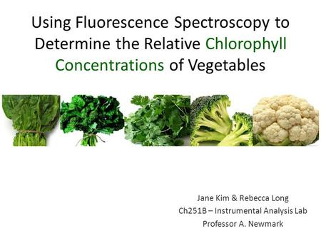Using Fluorescence Spectroscopy to Determine the Relative Chlorophyll Concentrations of Vegetables Jane Kim & Rebecca Long Ch251B – Instrumental Analysis.
