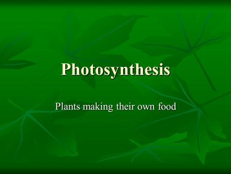 Plants making their own food