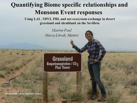 Quantifying Biome specific relationships and Monsoon Event responses Maxine Paul Marcy Litvak, Mentor Using LAI, NDVI, PRI, and net ecosystem exchange.