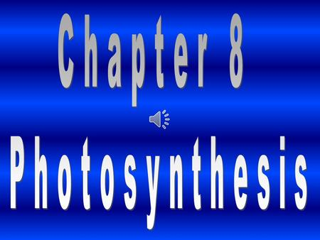 Chapter 8 Photosynthesis.