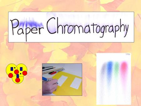 Paper Chromatography of a Spinach Leaf Lab *record all of the info underined and in red in your notebook Background Information: Paper chromatography.