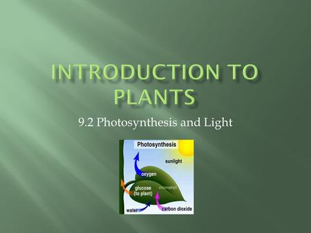 9.2 Photosynthesis and Light.  The Sun is the natural source of energy on earth.  The light that you see is called white light.  When light passes.
