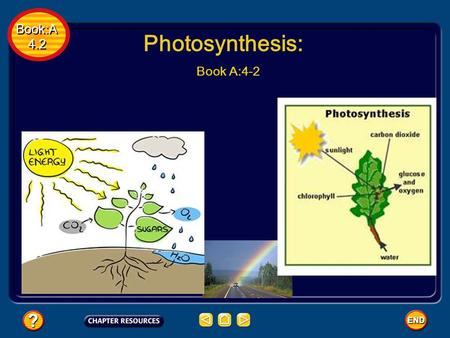 Book:A 4.2 Book:A 4.2 Photosynthesis: Book A:4-2.