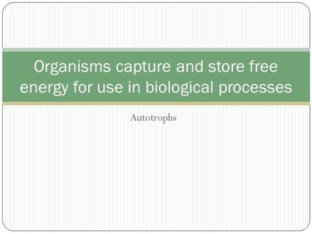 Autotrophs Organisms capture and store free energy for use in biological processes.